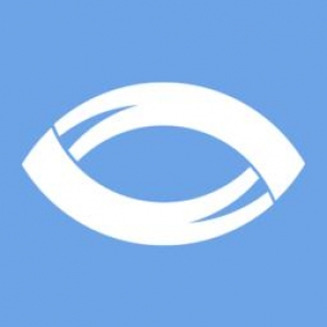 Blackthorn Vision - a custom software development company from Ukraine!