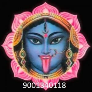 vashikaran specialist in England+91-9001340118 in,madhya pradesh
