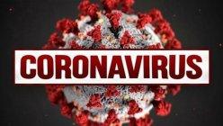 Researchers identified 7 new coronavirus variants in the U.S