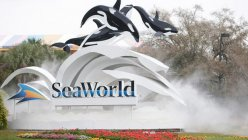 San Antonio's SeaWorld opens for Spring Break, continues requiring masks