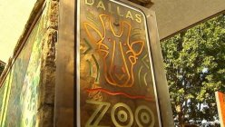 Dallas Zoo changed the way it charges for admission depending on the time of the year.