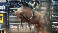 Professional Bull Riders World Finals announces permanent move to Fort Worth