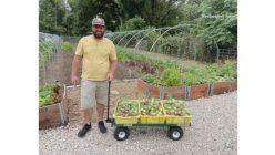 Vacant lot near a DART station in South Dallas food desert transformed into the urban farm for new growers