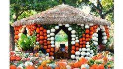 Autumn at the Arboretum returns to Dallas Arboretum with Bugtopia theme