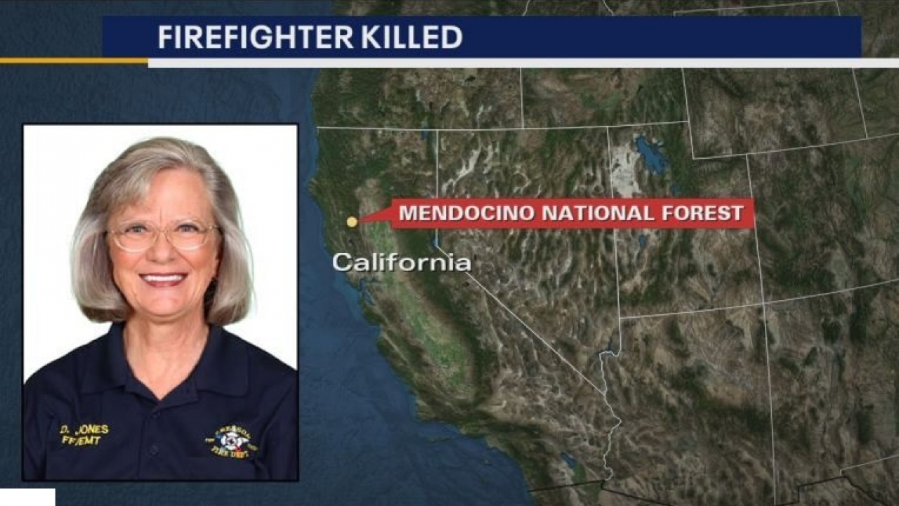 North Texas firefighter died while fighting a wildfire in the western United States.