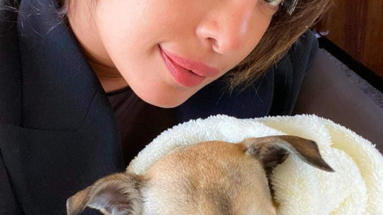 Priyanka Chopra shares an adorable picture with her paww-fect co-worker