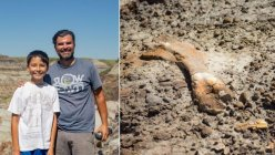 12-year-old finds 69 million-year-old dinosaur fossil during a hike with his dad