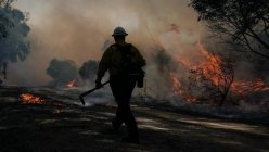 Firefighters critically injured, 90K evacuated as Silverado Fire grows in Orange County